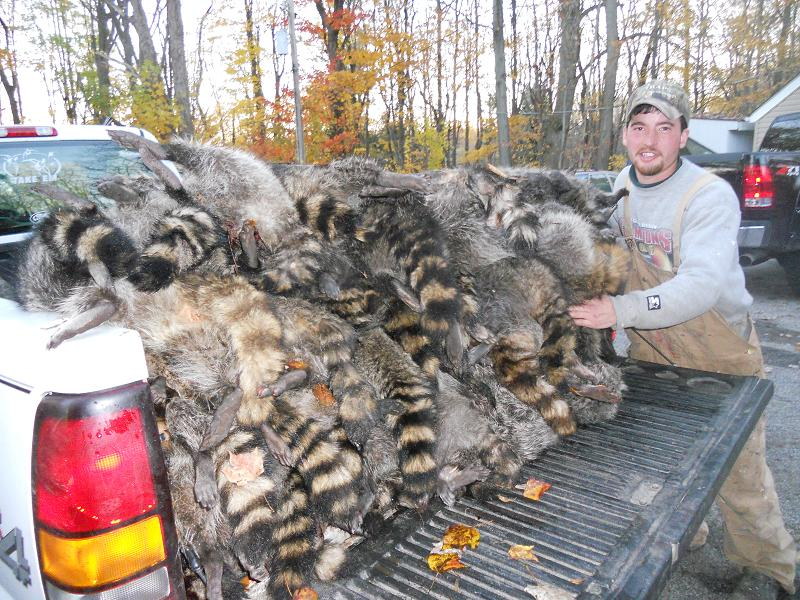 Trapping Radio – 92 – How to Trap and Catch more fur with Brandon Johnson from Trapper TV