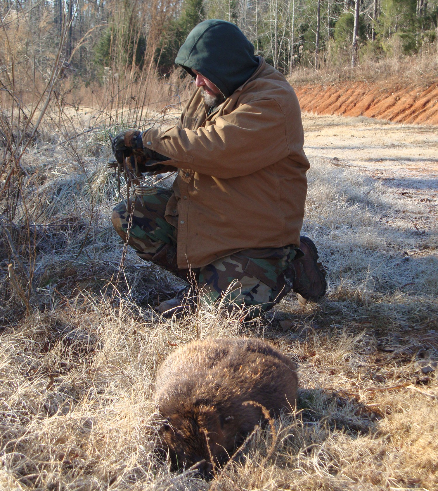 Trapping Radio 137 trapping understanding southerners, trapping breeding season coyote, selling lure and more